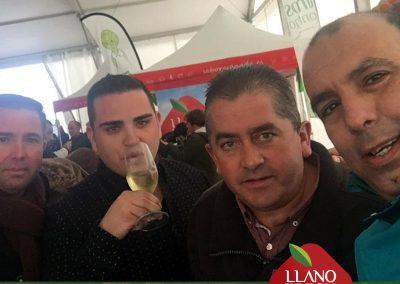 insta-Llano-Fresh-Trade-Zafarraya-Verduras-Hortalizas-4