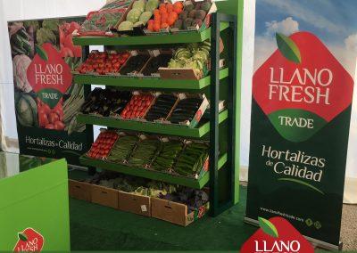 insta-Llano-Fresh-Trade-Zafarraya-Verduras-Hortalizas-5